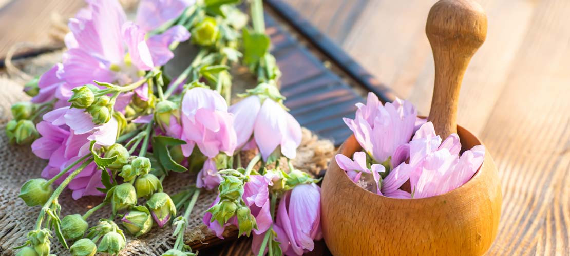 HOW TO DEAL WITH A SORE THROAT AND COUGHING USING NATURE'S MEDICINE CHEST